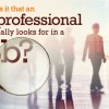 What IT professionals really want